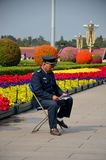 Chinese security guard reads in front of flower display Beijing China. Beijing, China - October 18, 2015: A blue uniformed security guard sits on a chair in Royalty Free Stock Images