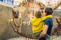 Beijing China, October 16, 2018: Dad and boy watching dinosaur skeleton in museum stock photos