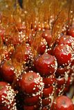 Beijing famous snack of Sugar-coated haws. Sugar-coated haws, sour and sweet palatable. Red Chinese hawthorn in crystal clear transparent syrup Royalty Free Stock Photography