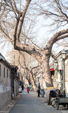 Beijing Hutong in winter Stock Photo