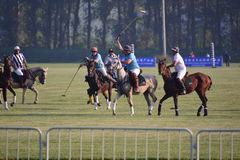 The 2016 Beijing International Polo Open Tournament Royalty Free Stock Image