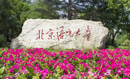 Beijing Language and Culture University stele Stock Photography