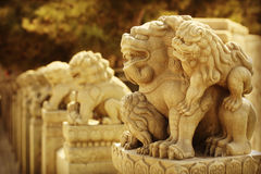 Beijing Marco Polo Bridge on the lion Royalty Free Stock Photography