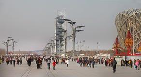 Beijing National Olympic Stadium /Bird s Nest Royalty Free Stock Images