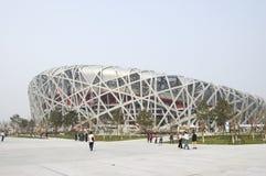beijing nationalstadion Arkivfoto