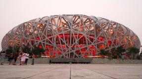 beijing nationell olympic stadionsikt Arkivbild