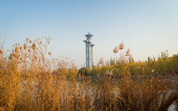 Beijing Olympic park tower fall landscape. Beijing Olympic tower fall landscape reflect in the lake Stock Photography
