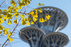 Beijing Olympic park tower. Beijing Olympic park tour tower Stock Photo