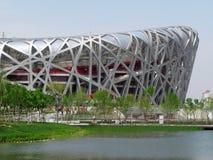 beijing olympic stadion Fotografering för Bildbyråer