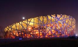 Beijing OSstadion Royaltyfri Bild