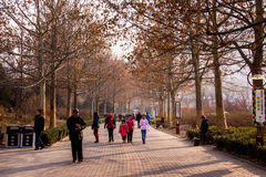Beijing Park Stock Photography