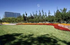 Beijing's urban landscape. Beijing's urban greening, roadside turf royalty free stock images