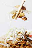 Beijing sauce shredded pork (Jing jiang rou si)— close-up Stock Images