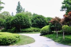 beijing trädgårds- slottsommar Arkivbilder