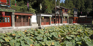 beijing ulica Suzhou obrazy stock