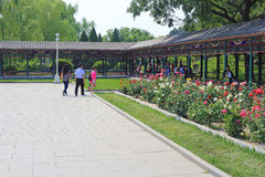 Beijing zhongshan park Stock Photography