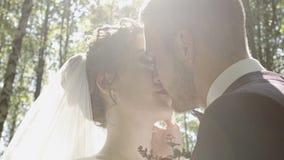 Beijo bonito dos noivos nas madeiras video estoque