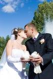 Beijo com os pombos nas mãos Foto de Stock Royalty Free