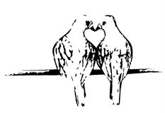 Beijo de dois pássaros Fotografia de Stock Royalty Free