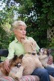 Beijo do cão Imagem de Stock Royalty Free
