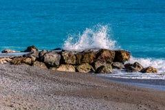 Beijo 6 do mar Imagens de Stock