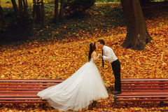 Beijo dos noivos que está nos bancos diferentes no pa Fotos de Stock