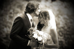 Beijo Wedding muito romântico Imagens de Stock Royalty Free