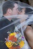 Beijo Wedding sob o véu fotografia de stock royalty free