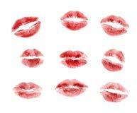 Beijos Fotografia de Stock