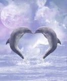 Beijos dos golfinhos Fotos de Stock Royalty Free