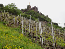 Beilstein Germany Royalty Free Stock Photography