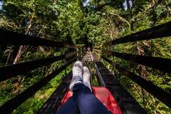 Bein des Mannes sitzend entspannend auf Achterbahn bei grünem Forest Park Stockfoto
