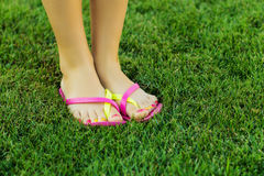 Beine auf dem Gras Lizenzfreie Stockfotos