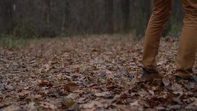 Beine eines Mannes, der durch den Herbstwald geht und die gefallenen Blätter nah oben tritt Langsame Bewegung stock video footage