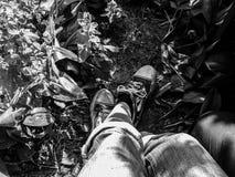 Beine eines Mannes im Gras, in den Turnschuhen und in den Jeans Lizenzfreies Stockfoto