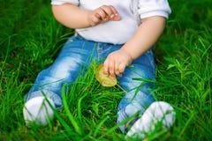 Beine eines menschlichen Babys in den Jeans auf einem Gras stockfoto