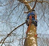 Beine und Ausrüstung des Bergsteigerbaumzüchters lizenzfreies stockbild