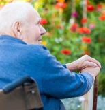 Being alone. Old man sitting alone in a wheelchair out in the garden Stock Images