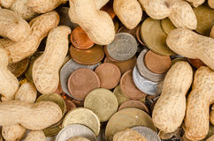 Being paid peanuts Royalty Free Stock Photo