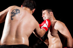 Being punched during a fight. Strong boxer being punched by his opponent with an uppercut Royalty Free Stock Image