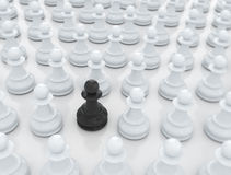 Being unique - Chess piece Royalty Free Stock Photo