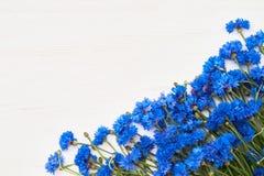 Beira azul da centáurea no fundo de madeira branco Vista superior, bobina Imagem de Stock Royalty Free