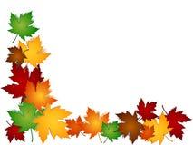 Beira colorida das folhas de plátano Imagem de Stock