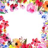 Beira da flor da aquarela Foto de Stock