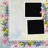 Beira das flores com quadros no fundo Imagens de Stock Royalty Free