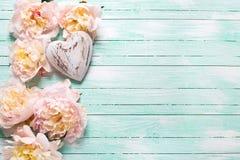 Beira das flores cor-de-rosa das peônias e coração decorativo no turqu Imagem de Stock