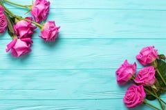 Beira das flores cor-de-rosa das rosas fotografia de stock
