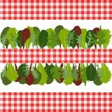 Beira das folhas da salada Fotografia de Stock Royalty Free
