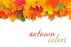 Beira das folhas de outono Fotos de Stock Royalty Free
