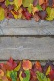 Beira das folhas de outono coloridas na madeira Fotografia de Stock Royalty Free
